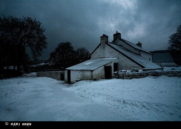 The Homestead by Mari