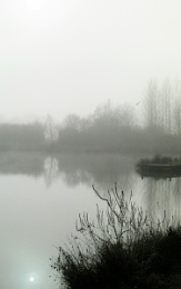 Misty Days 2