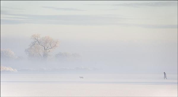 A Winters Walk by AlleyCatz
