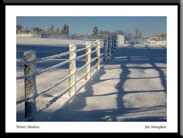Winter walk by carrot_heid