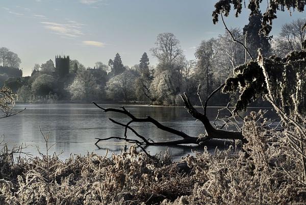 ellesmere frost by bobalot