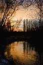 on golden pond by pixelpoet