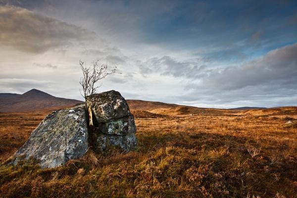 Erratic Moor by SGIBBONS