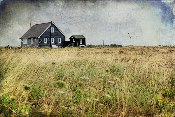 Lonely House by TrevW