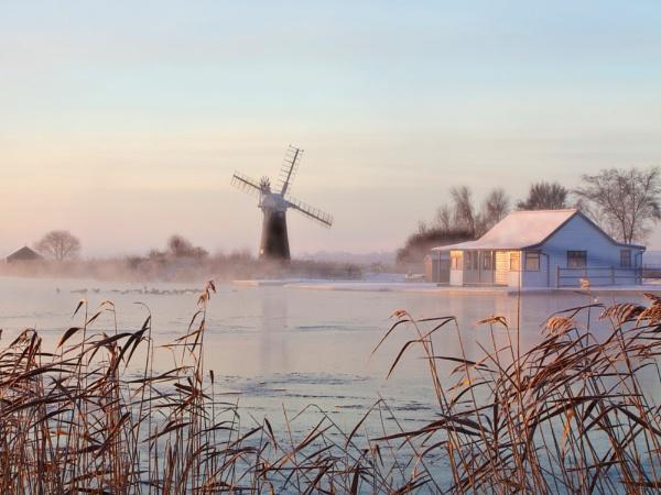 misty Thurne by ianrobinson