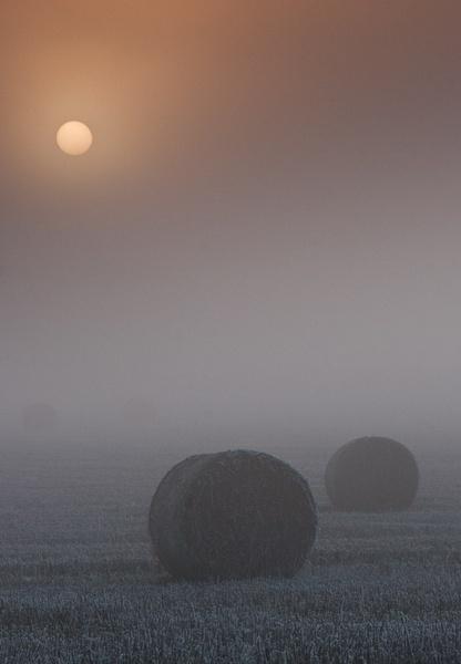Winter Bale by Gazzten