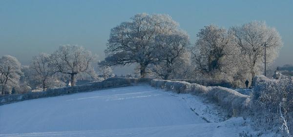 More snow by Gazzten