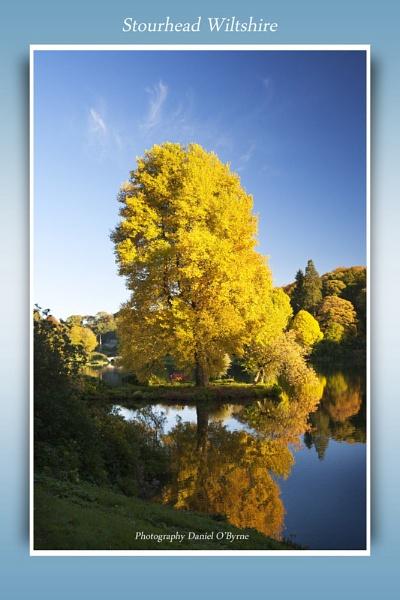 Stourhead : Wiltshire by danob