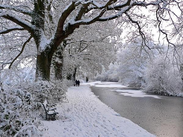 Winter wonderland by chasing_tarmac