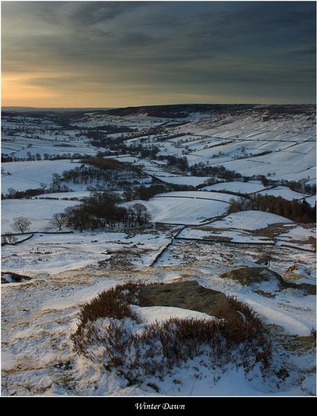 Winter Dawn by DaveMead
