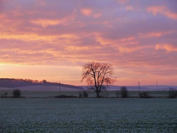 Winter morning, Carleton. by erichoulder