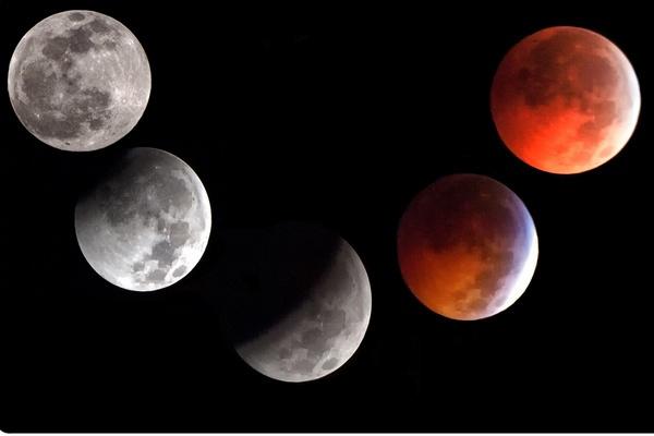 Lunar Eclipse December 21, 2010 by jbsaladino
