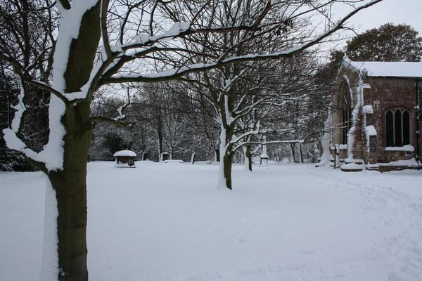 Blanket of snow by sophie_elizabeth