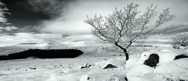 Burbage Winter by cdm36