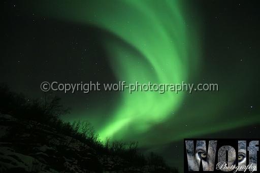 Aurora Borealis, Alta, Norway by wolf1964