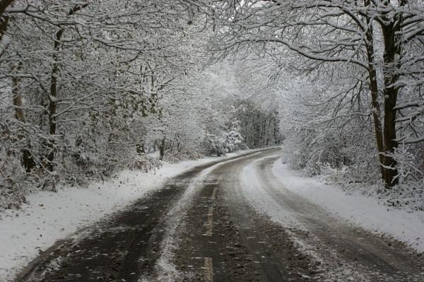 Snow by jinstone