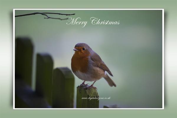 Merry Xmas by danob