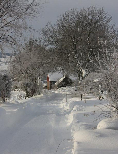 Winter Wonderland by HeatherR