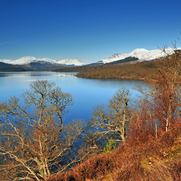 ""\""""Winter Sunshine on the Loch"""" by RonnieAG""600|600|?|en|2|70ffa893a6933f4b3a055ffdce958d57|False|UNLIKELY|0.30764392018318176