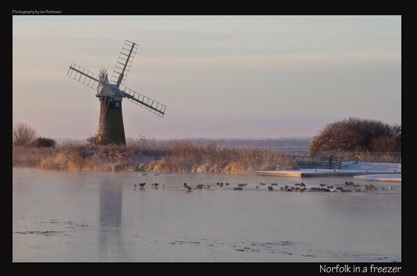 Norfolk in a freezer by ianrobinson