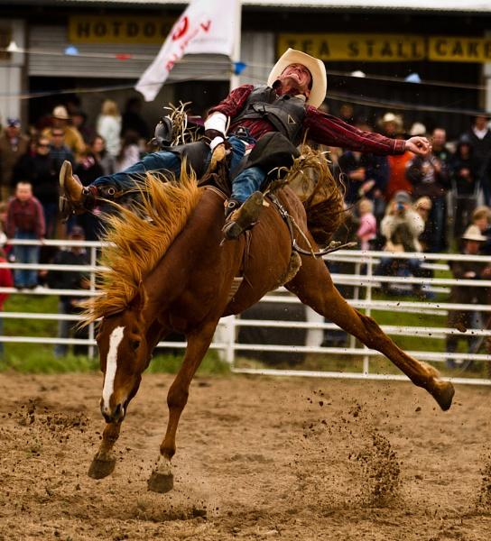 Rodeo VIII by steve_evans