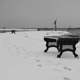 Winter Walk...