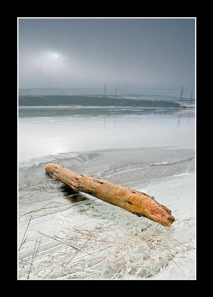 Dam Log! by petejeff