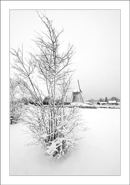 White Winter Windmill by conrad