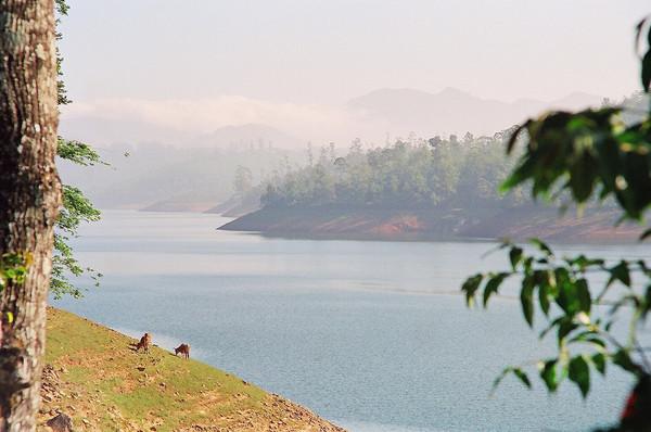 A Reservoir in Valparai, Tamil Nadu, India