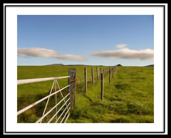 a gate by jimmy-walton