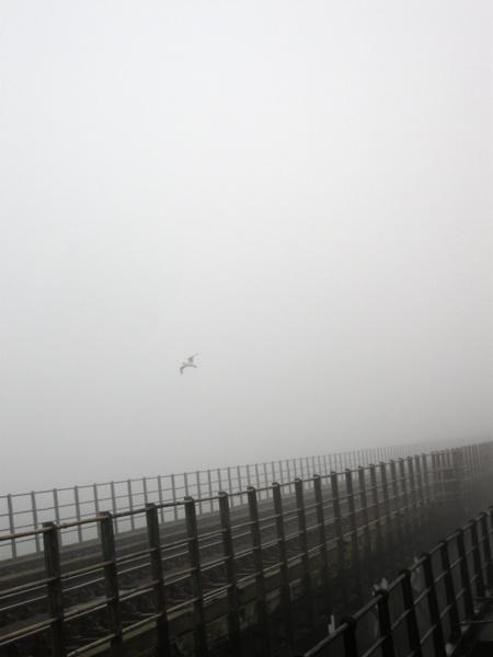 The Fog by mroch06