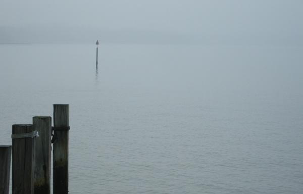 The Fog 2 by mroch06