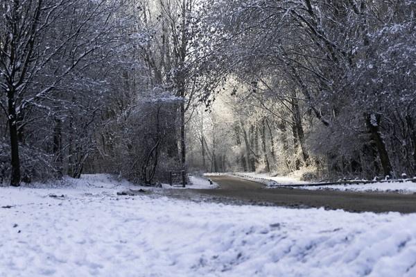 Empty snowy lanes by redpuma