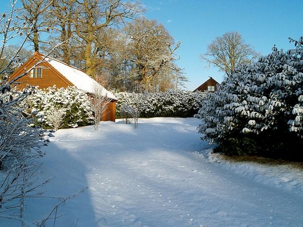 Snowed In by kevtrucker