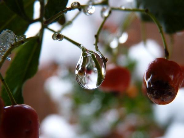 Droplet by CallumThomas