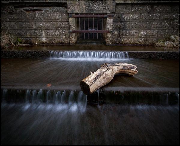 Water Logged by ripleysalien