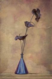 bottle & flowers