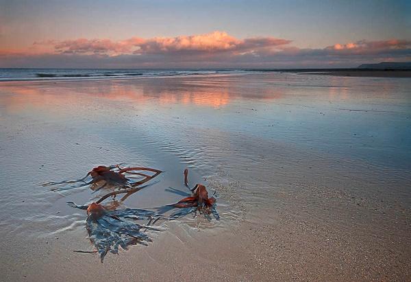 Redcar Beach by pdove