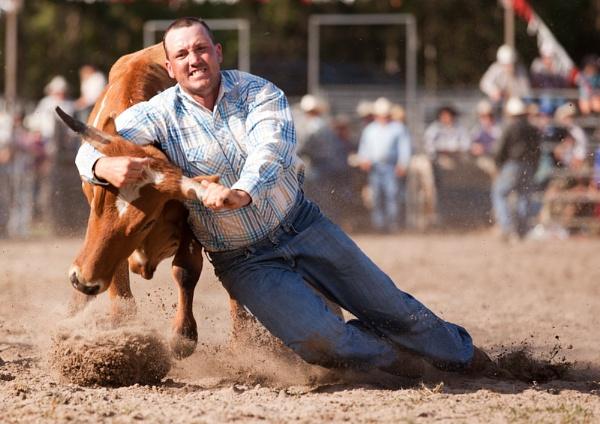 Steer Wrestling X by steve_evans