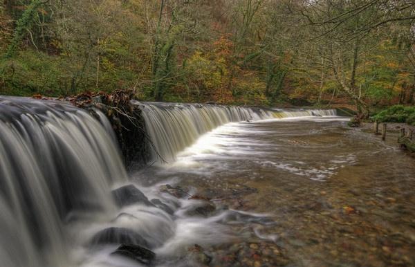 Plym Bridge Weir by RichieJ