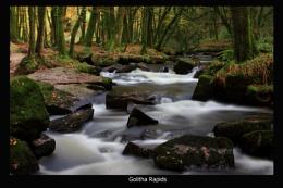 Golitha Rapids