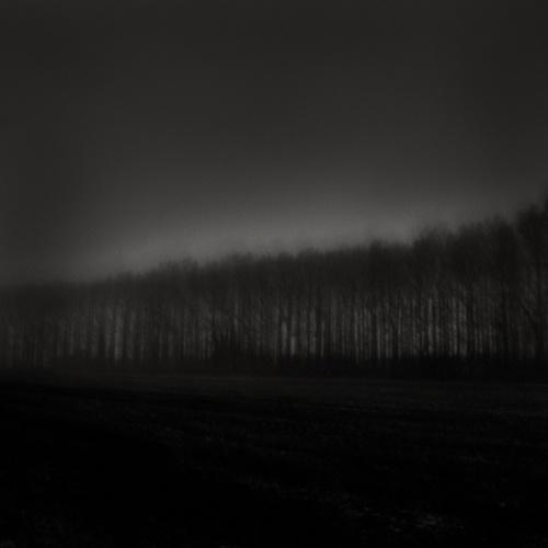 Wandering in Dreams Unspoken by thefatcat44