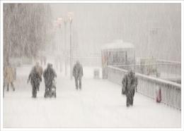 Let it snow...let it snow !