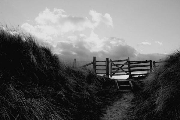 Gate by Joscelyne