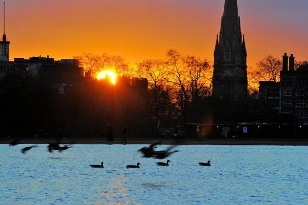 Sunset in the Kensington Gardens by gabriel_flr
