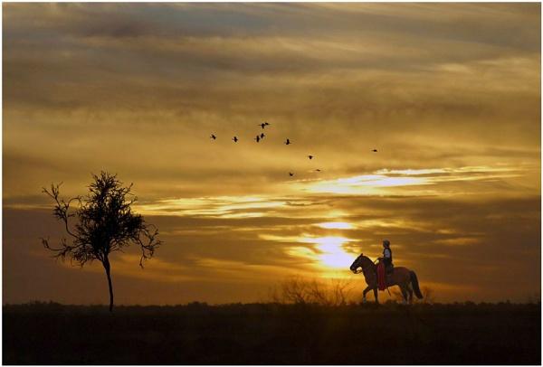 Return at sunset by rbai2007