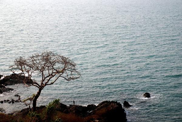 Land and sea by Nikola