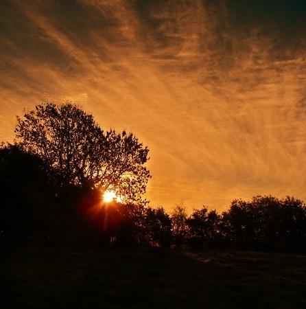 Sunrise #2 by mitchellbanksphotography