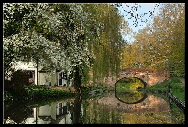 Basingstoke Canal by lensman