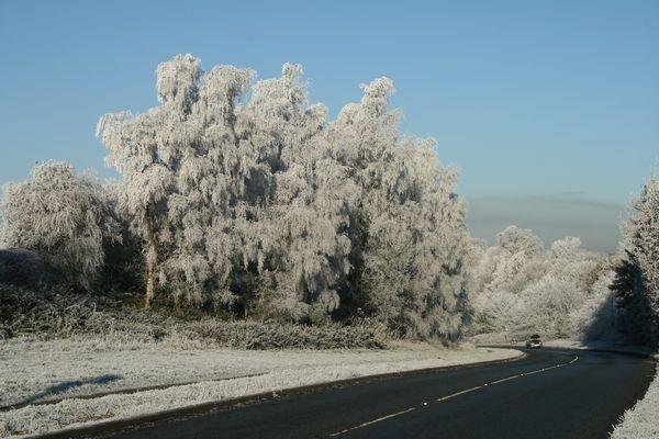 Hoare Frost wonderland by BobbyHB